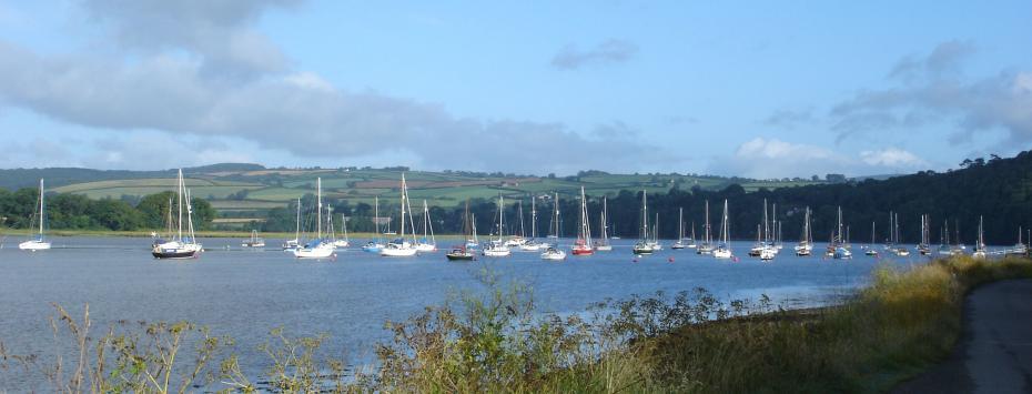 River Tamar Boat Sales